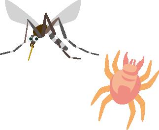 うつる コロナ 蚊 から 蚊に刺されるとコロナウイルスに感染する?WHOの見解を確認|イチのメモ帳